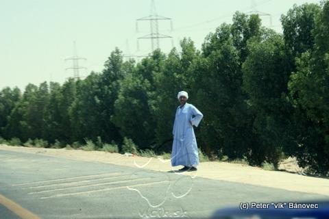 Stopár na diaľnici