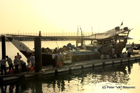 Rybári vykladajú náklad z lode