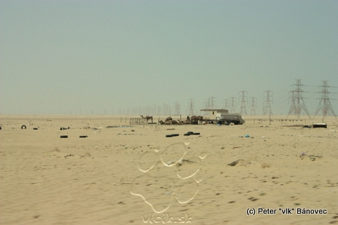 Obydlie beduínov a ťavy v ohrade