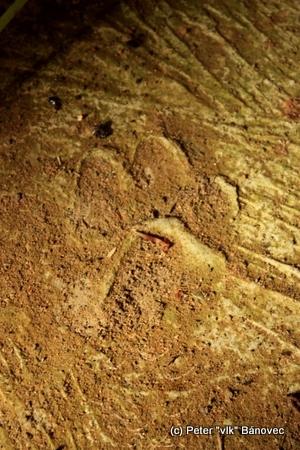 Stopy rysa na podlahe
