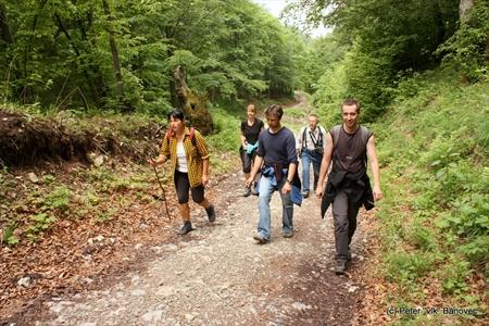 Vchádzame do lesa...