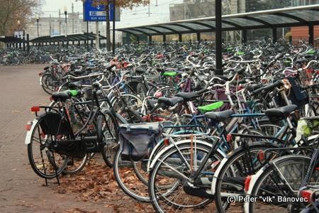 Viac ako 50% dopravy je v Almele vykonávanej na bicykli, priemerne každý občan za deň prejde na bicykli vzdialenosť 25km