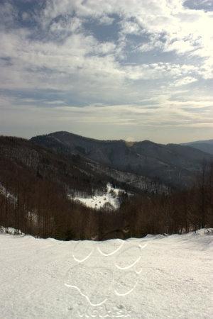 pohľad zo sedla od Pavúkovej lavičky do doliny